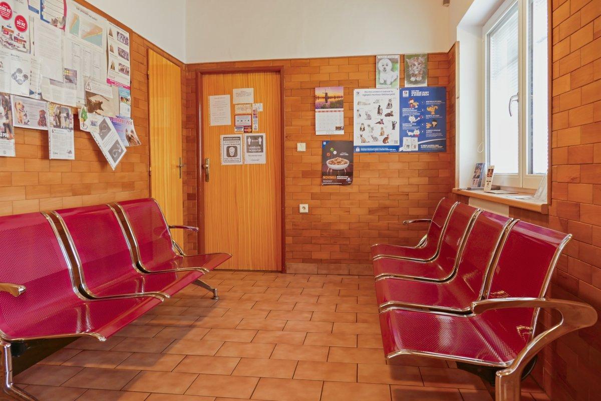 čekárna kliniky
